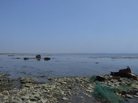20110611-13.jpg